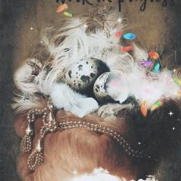 art fantasy nest eggshells feathers workinprogress magical dreamy keepitsimple becreative stestyle ste2020 madewithpicsart love