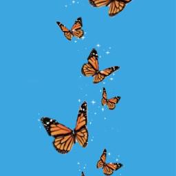 freetoedit butterfly butterflies butterflyaesthetic butterfliesaesthetic