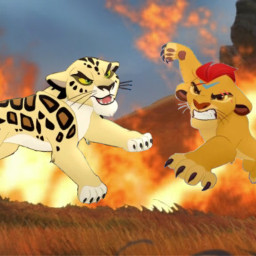 lionguard kion thelionking makucha leopard