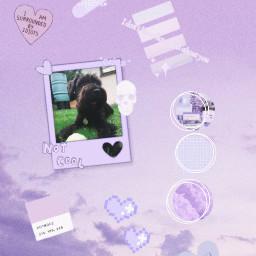 freetoedit mydog pastel pastelpurple lavender