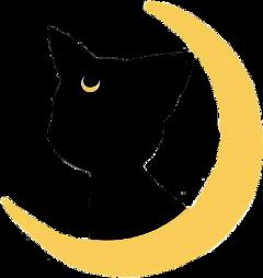 freetoedit sailormoon sailormoonluna luna moon