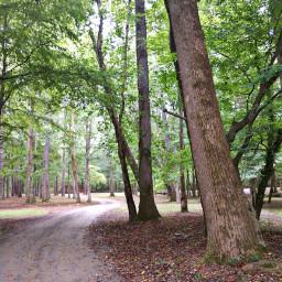 freetoedit vacationmood nature naturelover outdoors
