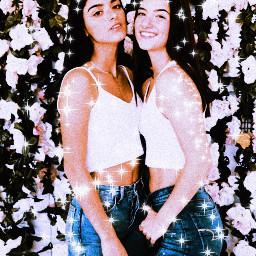 charli dixie thedamelios sisters retro freetoedit