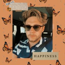 freetoedit niall horan niallhoran heartbreakweather butterflies butterfly aesthetic retro retroaesthetic vintage vintageaesthetic butterfliesbackground