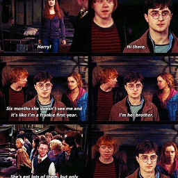 harrypotter memes harrypottermemes ronweasley hinny ginnyweasley hermionegranger ship hogwarts ronmione dramione drarry freetoedit abba contest fanacc love followers dracomalfoy remixit