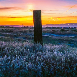 freetoedit newmexico roadtrip sunriseshimmer purplemountainsmajesty