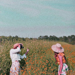 freetoedit beautiful photo lovely nature flowers field sky skylovers aesthetic