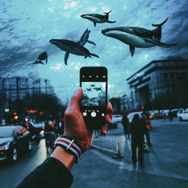 #freetoedit #underwater #whales #overlay #people #citystreet #city #surreal #ocean #1970effect