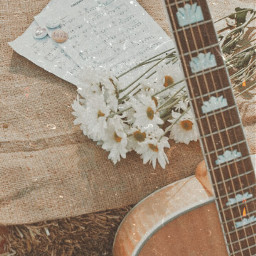 freetoedit replay replays replayedit filter effect vintage aesthetic retro preset presets guitar music musician edit