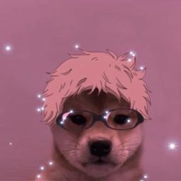 90 edit edits 90sedit glam pink dog tsukishima freetoedit