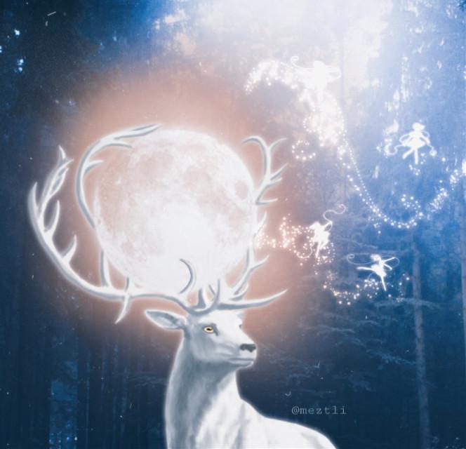 #freetoedit #fantasy #deer #moon #magic @meztli_01