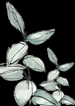 freetoedit sticker aesthetic blue aestheticblue flower aestheticflower vintage green aestheticgreen leaves