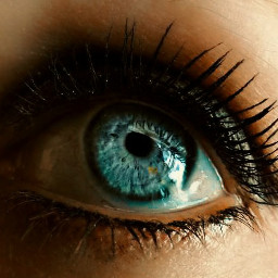 freetoedit myphoto myclick photography eye blueeyes makeup