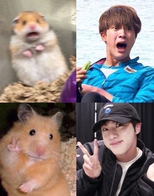 Lol 😂. this meme was recommended to me by @limelight__blink  pls go follow her #bts #btsmemes #jin #kpop #kpopmemes #lol #funnyaf #freetoedit