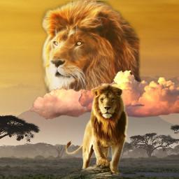 thelionking disney lion lionking spirit simba mufasa africa ghost savanna lions kingofbeasts