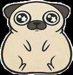 мопс мопсик мимими мило животные собака пёсик freetoedit