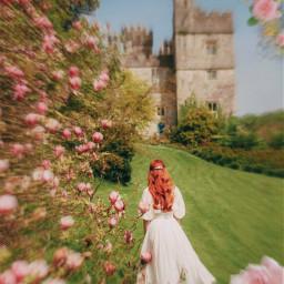 freetoedit flowers aesthetic cute tumblr makeawesome girl pink red pastelflowers