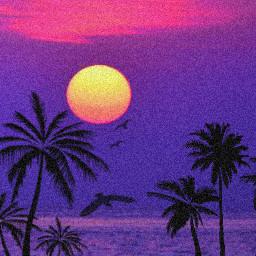 sunset freetoedit picsart palmtrees pink purple tree charlidamelio nikiminaj saweetie cardib addisonrae save aesthetic hypehouse bts kpop blacklivesmatter blackpink tiktok