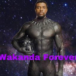 chadwickboseman blackpanther legend goodman marvel rip hero tchalla wakandaforever blacklivesmatter freetoedit