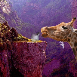 giantanimals fantasy giraffe animal girl freetoedit
