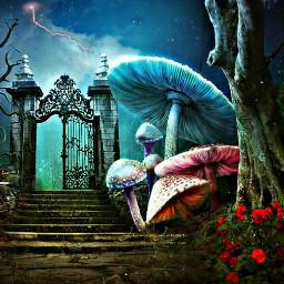 gate mushrooms cool flowers lighting creepy treebranches like love freetoedit