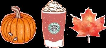 Happy Fall :) #fall #orangeaesthetic #happyfall #pumpkin #pumpkinspicelatte #starbucks #september #sticker #whippedcream #pumpkinseeds #jackolantern
