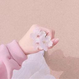 softaesthetic softpink grudgeaesthetic kawaii kawaiiaesthetic stars aesthetic anime edit edits aestheticedit aesthetics dark japan music photography barbieaesthetic