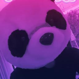 panda edit stephiance stephaniesoo freetoedit
