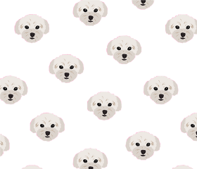dogbackground dog dogs cutedog cutedogs background transparentbackground cute puppy freetoedit