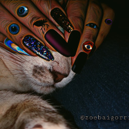 freetoedit catlover oscuridad oscuro eyes