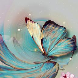 freetoedit butterfly mastershoutout love myartedit