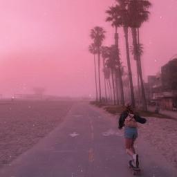 freetoedit wallpapers wallpaper skatergirl skateboard summer la palmtrees sunrise sky pastel skateboardaesthetic aesthetic