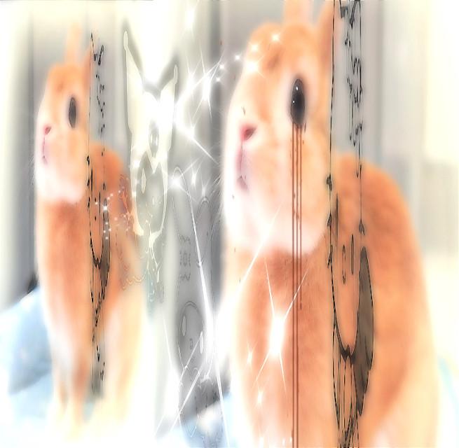 farewell bunny 2.   #emo #tumblrgirl #horrorcore #blood #dark #gore #red #blood #psycho #chains #goth #gothgrunge #gothic #death