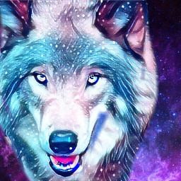 galaxy wolfart space wolf