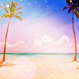 freetoedit beach palmtrees