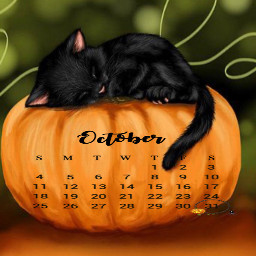 october calendar 2020 blackcat srcoctobercalendar freetoedit