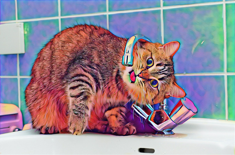 #freetoedit #cat#edit