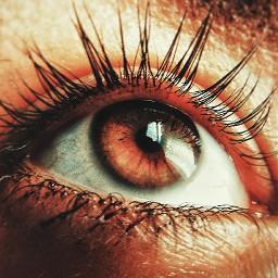 freetoedit myphotography eyes eye eyecloseup