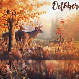 autumn deer blur effect sticker obssesed yellow orange warm october calendar beautiful simple minimal squarefit easy 🤩 🧡🧡🧡 🍂 madewithpicsart 😍😘 freetoedit remixit❤ remixit srcoctobercalendar octobercalendar