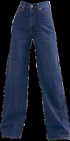 pants jeans nicheclothes clothesaesthetic clothes widelegjeans nichememe niche aesthetic clothing jeansaesthetic pantsaesthetic freetoedit