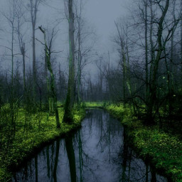 freetoedit dark swamp moon night