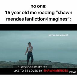 memes blacklivesstillmatter s shawnmendes mendesarmy shawnmendesmemes wonder shawn mendes shawnie muffin mendesfam sm4