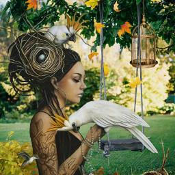 funswing swing girl pretty tattoos birds cocatoo outdoors birdsnests birdcage autumn autumnleaves imagination myimagination stayinspired create creativity madewithpicsart freetoedit