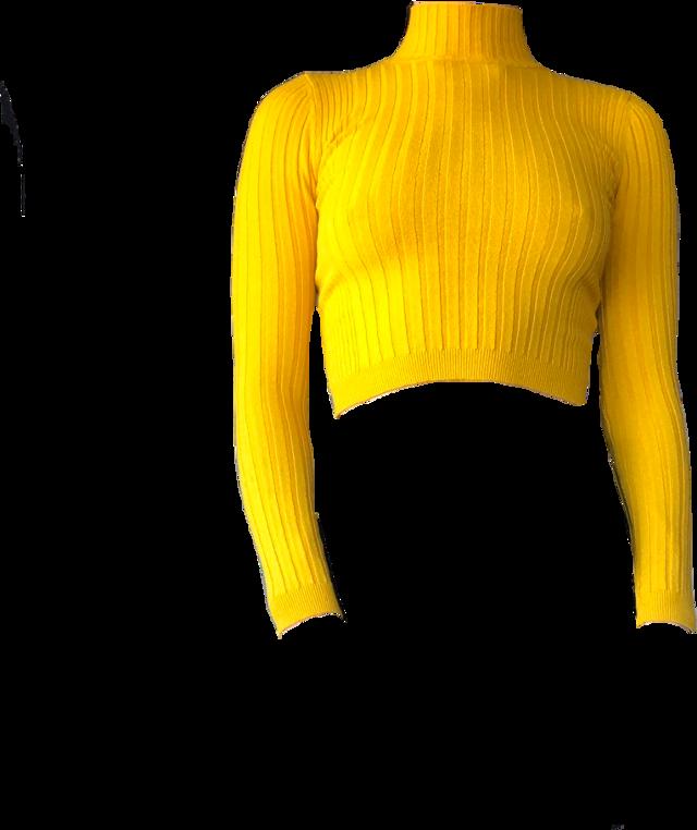#yellow #yellowaesthetic #arthoe #arthoeaesthetic #yellowtop #yellowcroptop #turtleneck #yellowturtleneck #turtlenecksweater #chic