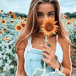 photo photography photoshop trend trending summer spring vibes cute aesthetic beautiful sunflower heather