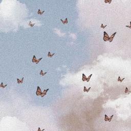 freetoedit aesthetic butterfly butterflies clouds cloudswithbutterflys aestheticsky aestheticwallpaper overlay blueskywithclouds sky