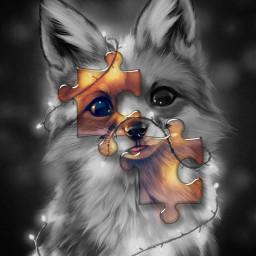 foxinlights lights bnw blackandwhite puzzle puzzlepiece cutefox pieces srcpuzzlepieces puzzlepieces freetoedit