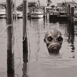 freetoedit monster myphotography ocean boatdock
