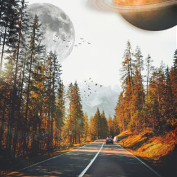 freetoedit road planet birds surreal sun light trees landscape inspiration stayinspired madewithpicsart
