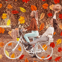 freetoedit autumn bicycle hat bestfriend leavesfall aesthetic srcautumnleaves autumnleaves